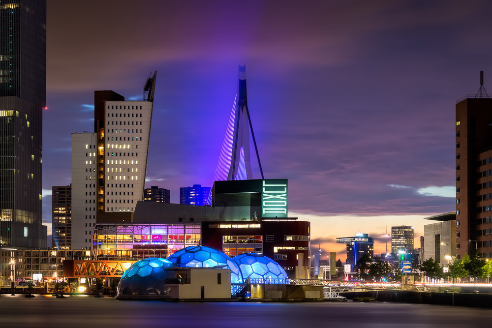 Rotterdam Nights no.jpg