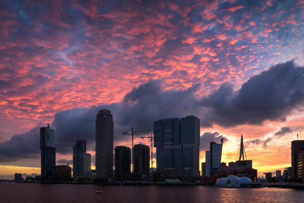 Rotterdam Nights 2.jpg