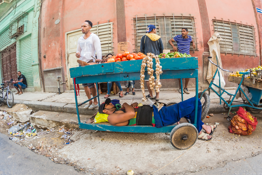 A street trader takes an afternoon  siesta  under his produce in Old Havana