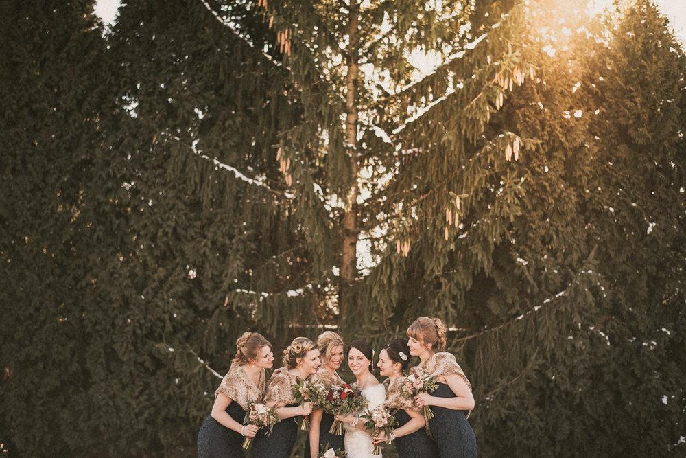 Michigan Wedding Photographer - Grand Rapids Winter Wedding - 032.jpg