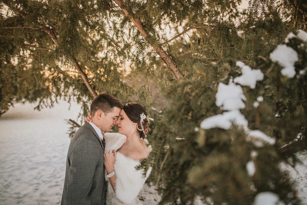 Michigan Wedding Photographer - Grand Rapids Winter Wedding - 071.jpg