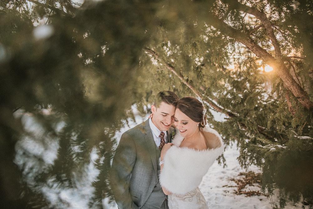 Michigan Wedding Photographer - Grand Rapids Winter Wedding - 073.jpg