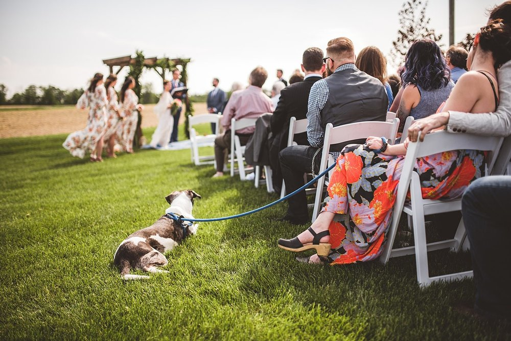 Brandy Evan - Wedding at Blissful Barn in Three Oaks, Michigan - 091.jpg