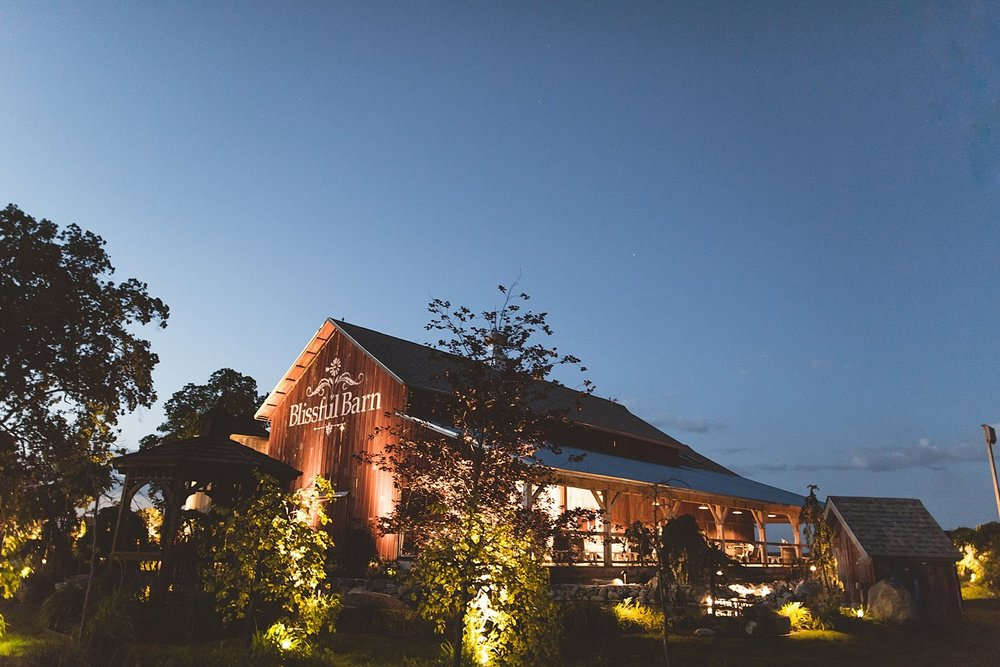 Brandy Evan - Wedding at Blissful Barn in Three Oaks, Michigan - 179.jpg