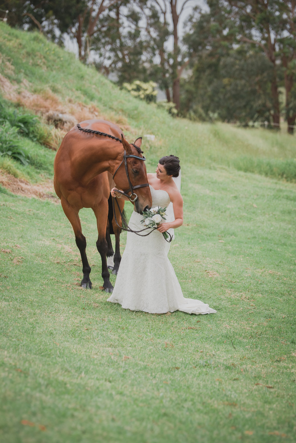 grace-carl-dargaville-wedding-modern-elegant-18