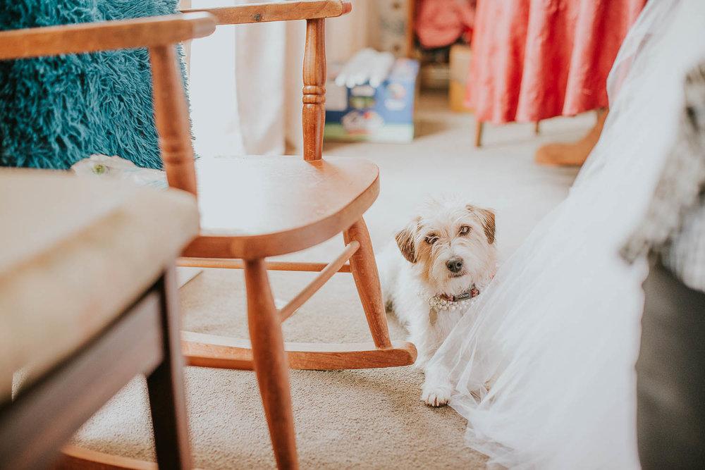 james-melinda-auckland-rustic-farm-wedding-14