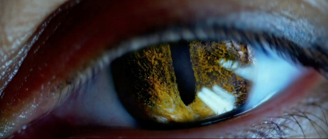 lucy-2014-movie-screenshot-cat-eye.jpg