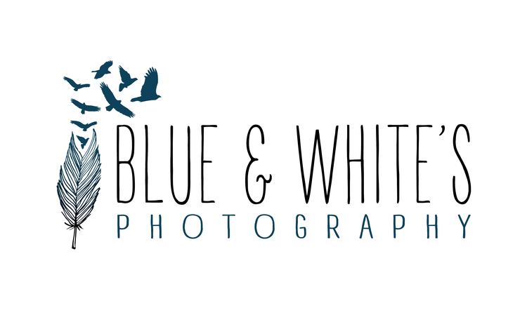 Blue and Whites Photography Dorset & Hampshire Wedding Photographer