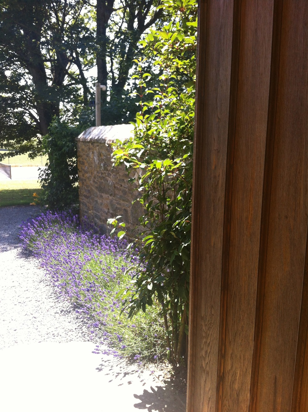 West Wing entrance oak door lavendar.jpg