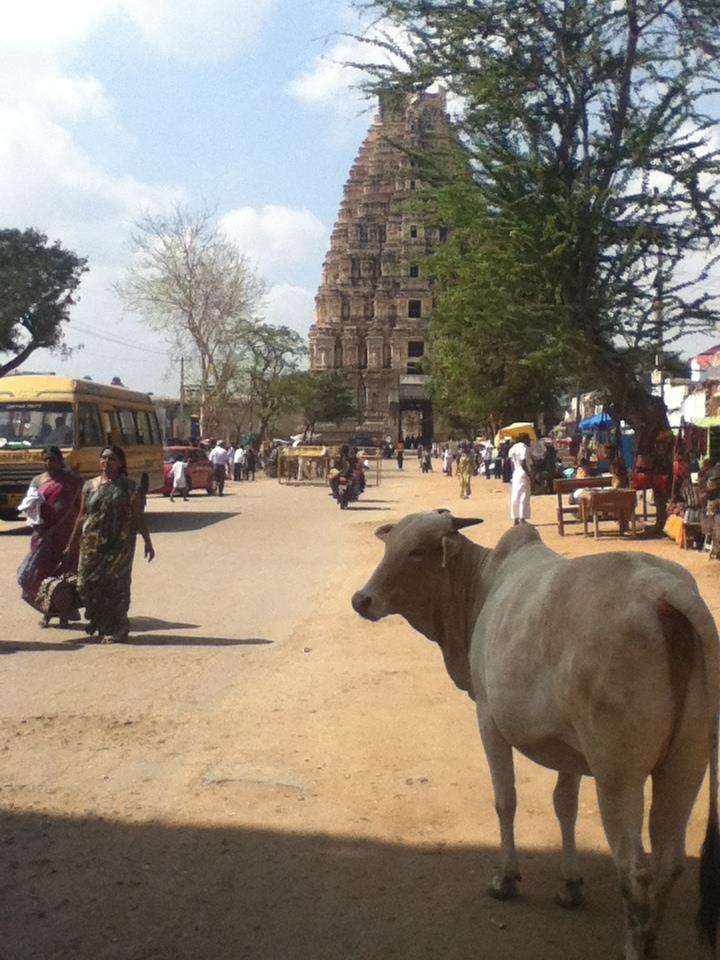 Hampi,India 2012.jpg
