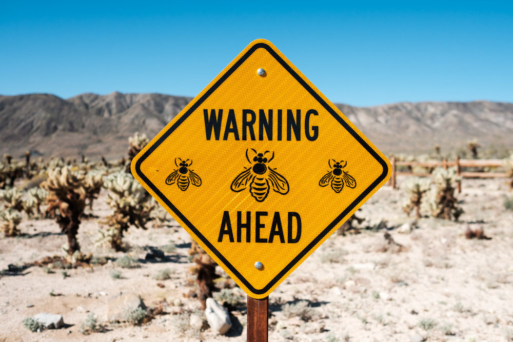 Not a pretty sign to see when you are deadly allergic to bees...