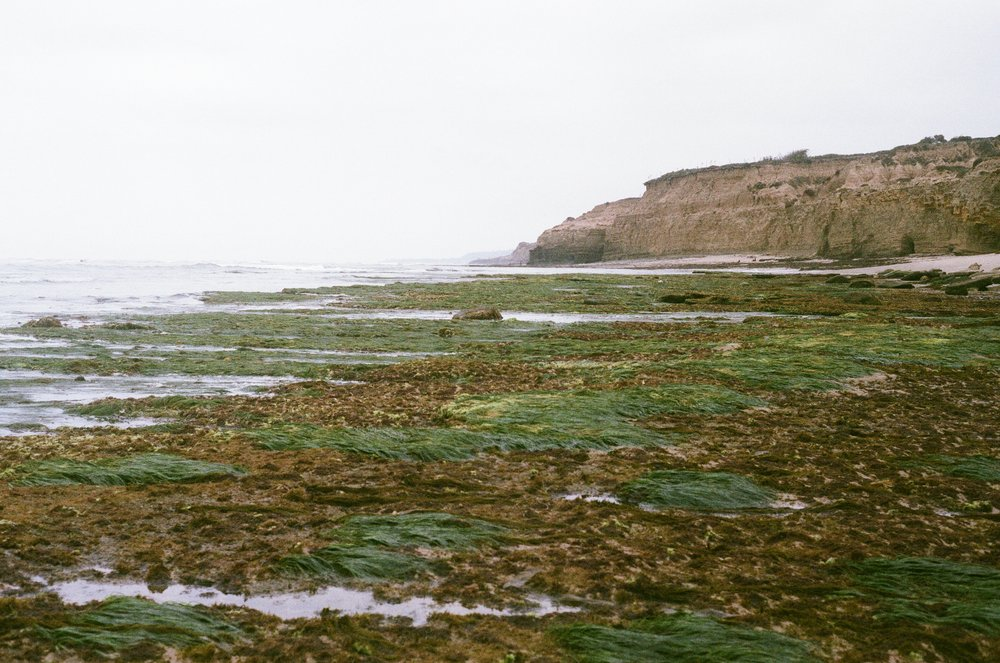 Low tide in Point Loma, San Diego - CA (shot w/ a Leica M3)