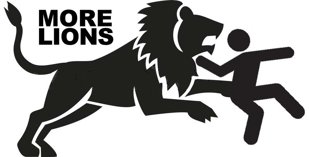 Learn about More Lions brand by clicking the image.