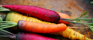 multi-coloured carrots