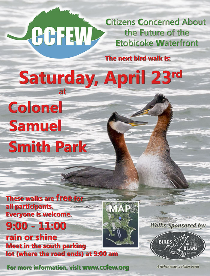 April-2016-Bird-Walk-Poster.jpg