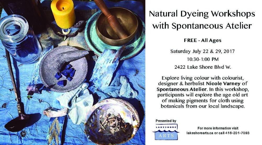 SA Natural Dyeing Workshops.jpg