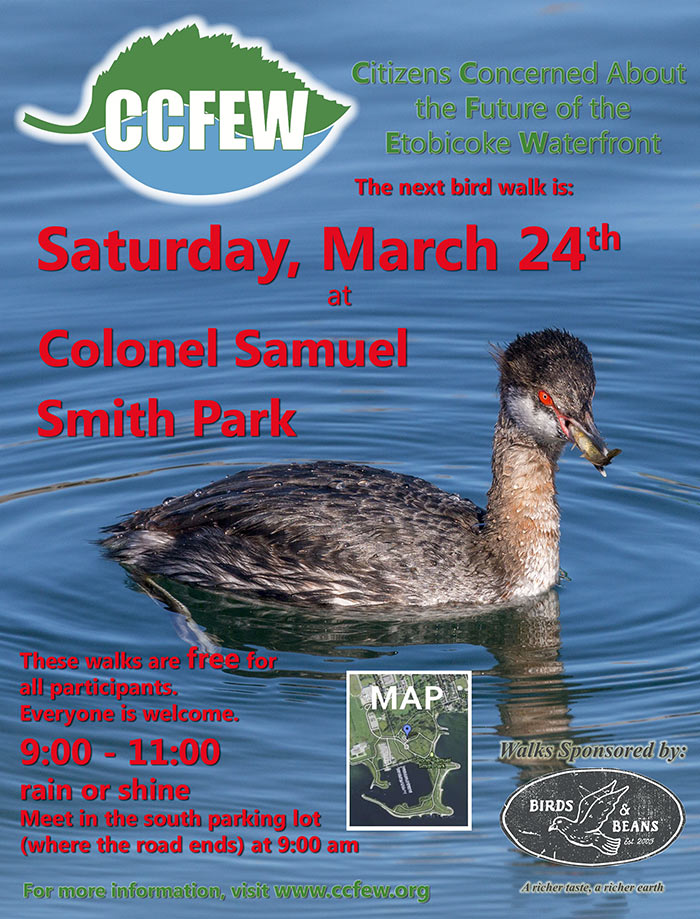 March-2018-Bird-Walk-Poster.jpg