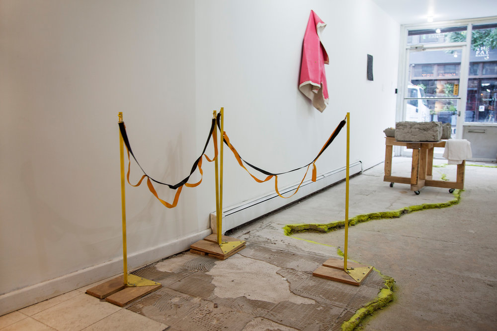Installation view,  (Gardens) of Feeling and Fervor,  2015