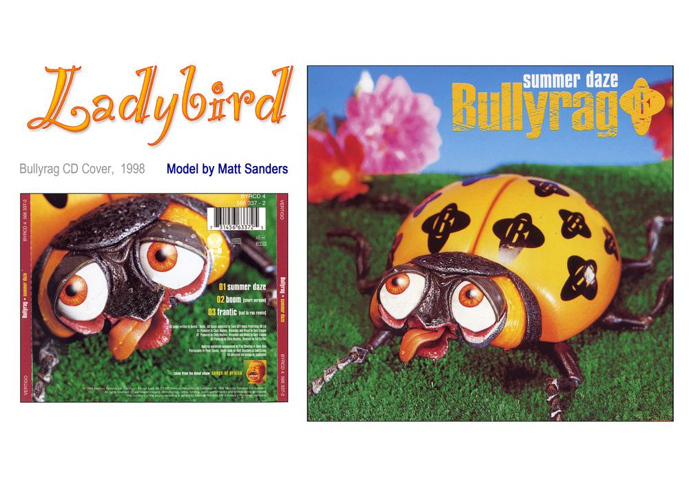 Ladybird Sheet.jpg