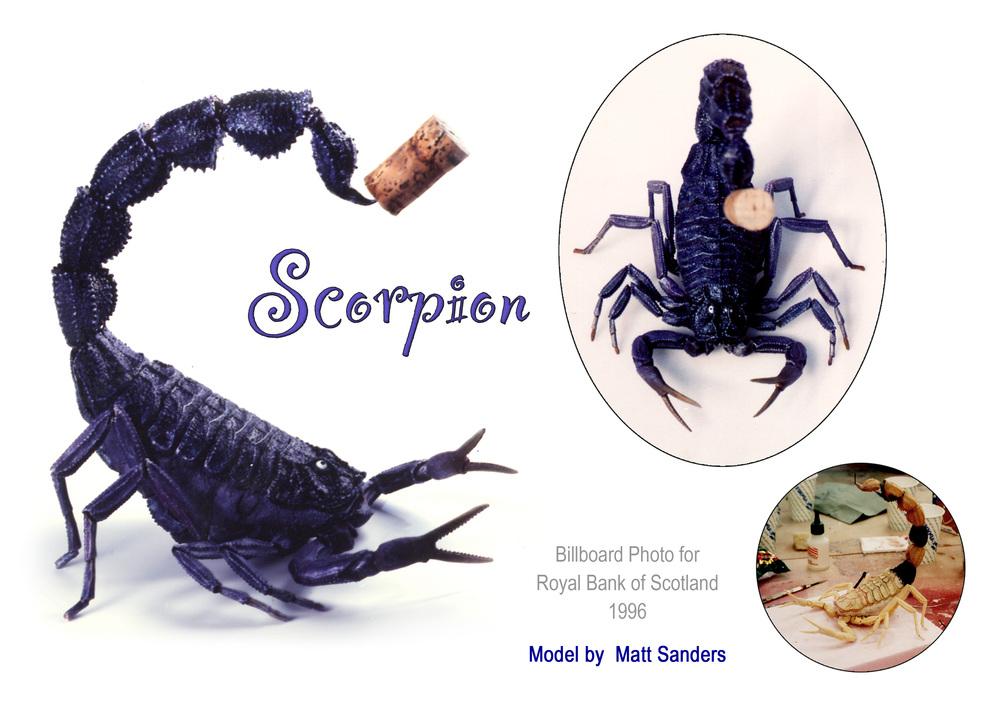 Scorpion Sheet.jpg