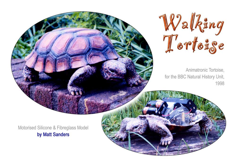 Tortoise Sheet.jpg