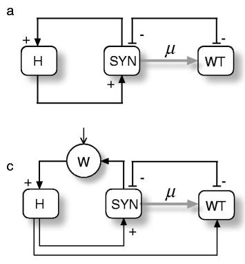 Logic diagrams showing interactions between terraformation motifs. (Sole et al, 2015)
