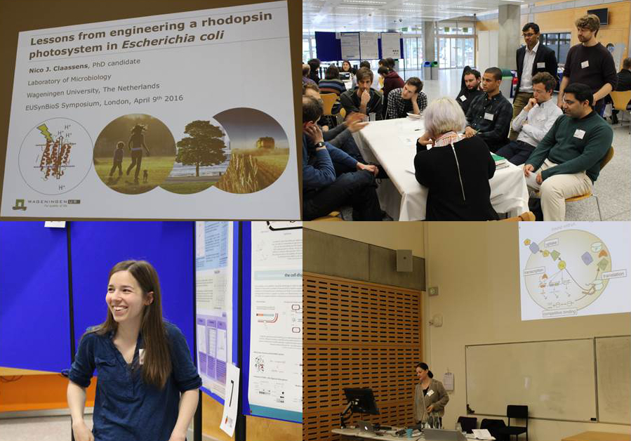 Captions from the participants presentations and the poster and breakout sessions.