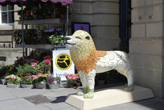 Mosaic Lion standing in position on Milsom Street, Bath,UK