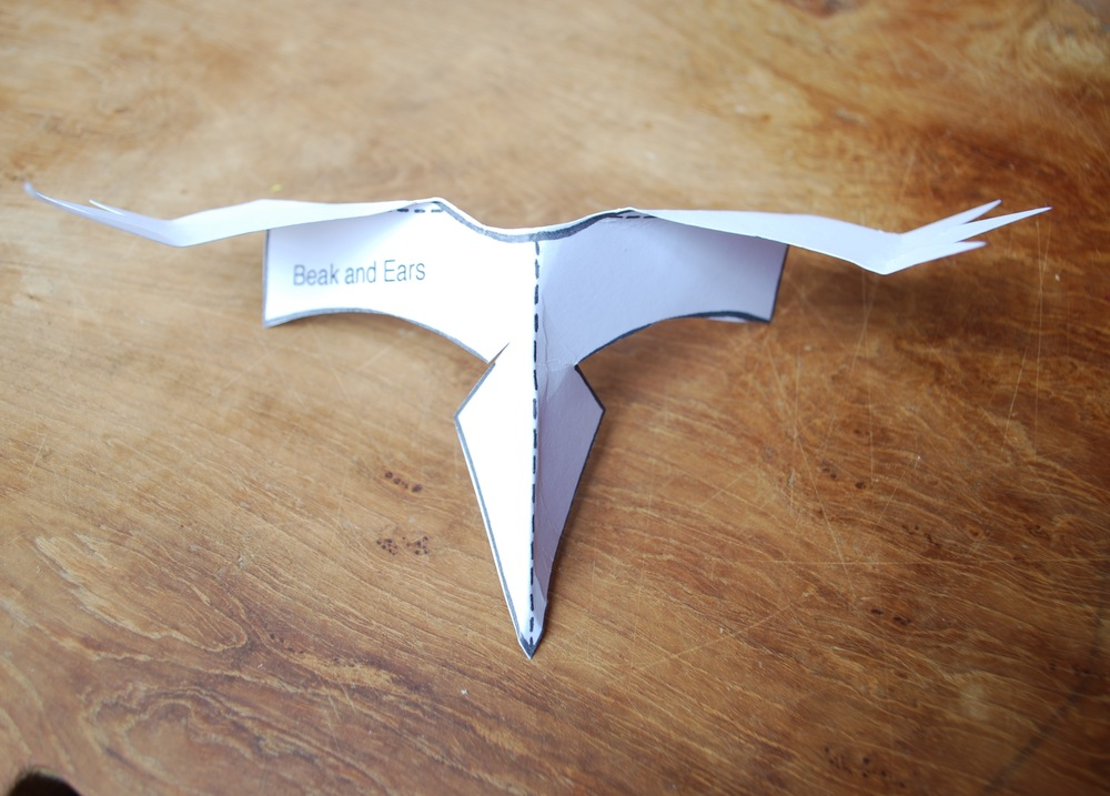 Cut out the beak and fold where indicated by a dotted line.