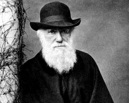 02_Darwin.jpg