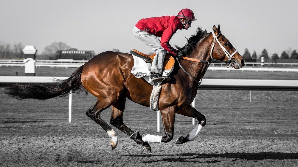horse-race-jockey.jpg