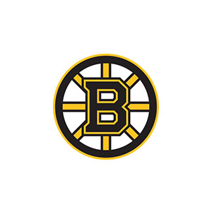 _0034_boston-bruins-logo.jpg
