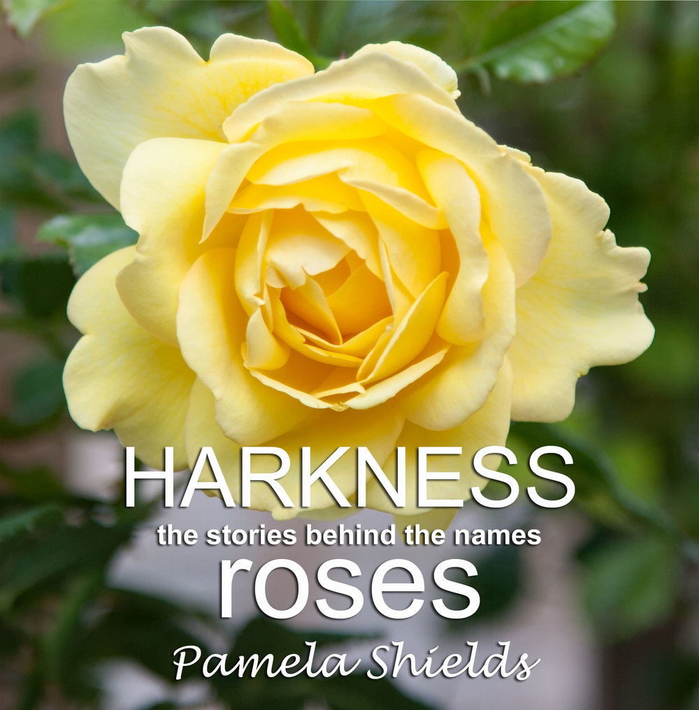 Pamela Shields ().jpg