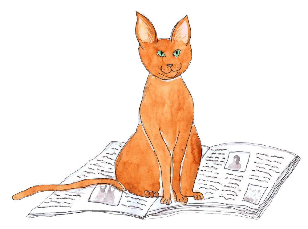 cat newspaper edit line.jpg