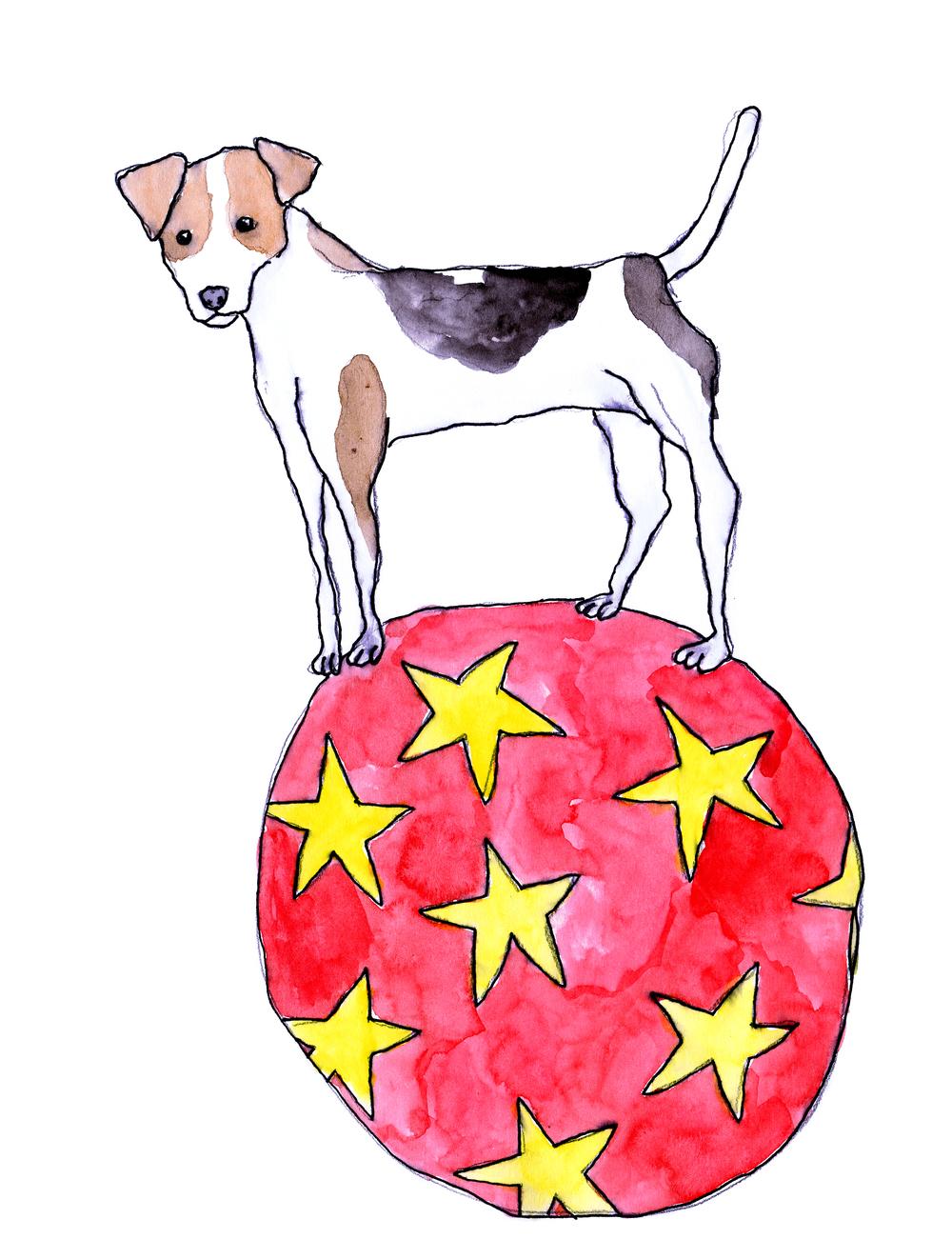 balancing ball.jpg
