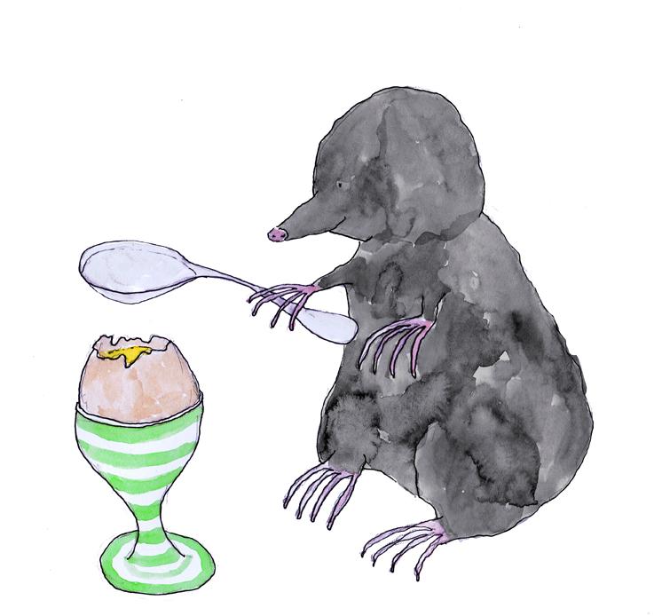 sml mole egg.jpg