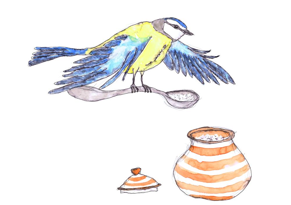 sml Bird sugar.jpg