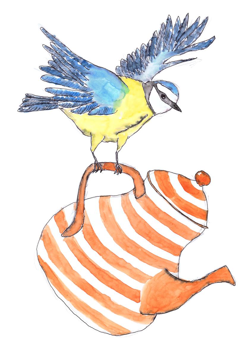 sml bird teapot.jpg
