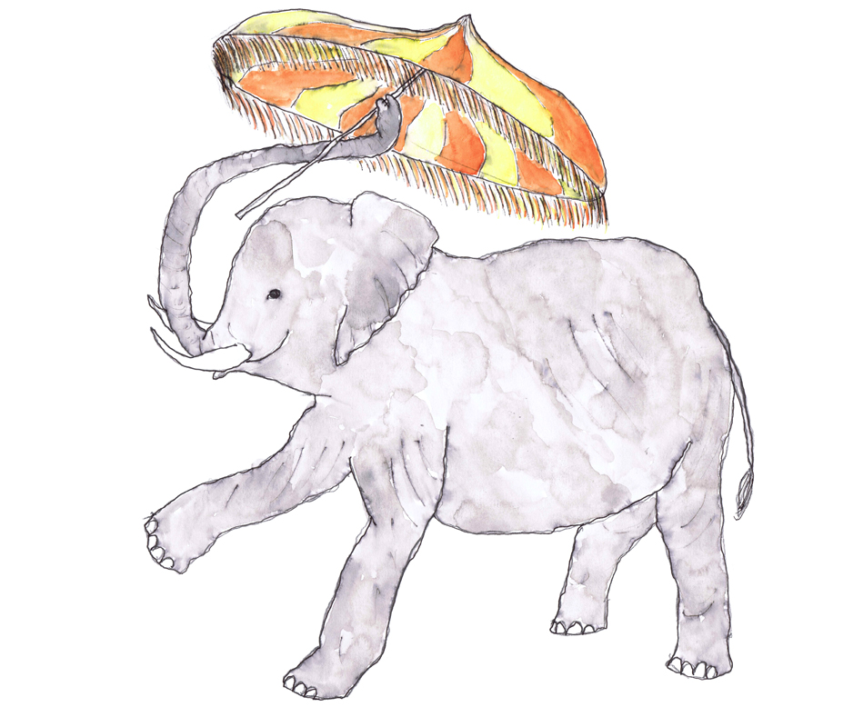 sml Elephant.jpg