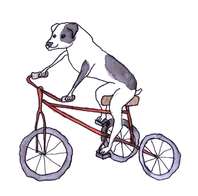 sml dog bike.jpg
