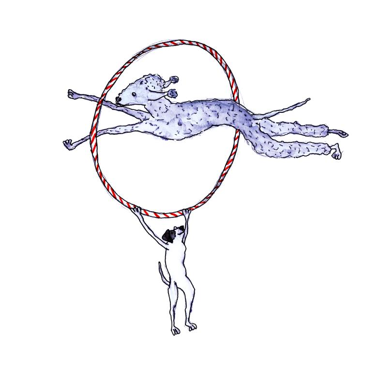 sml hoop jump.jpg