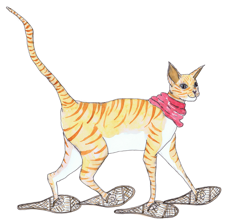 sml cat snood snowshoes.jpg