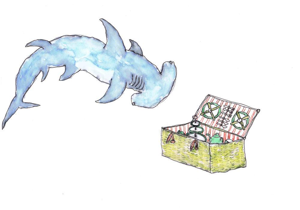 Hammer head shark Low-res.jpg
