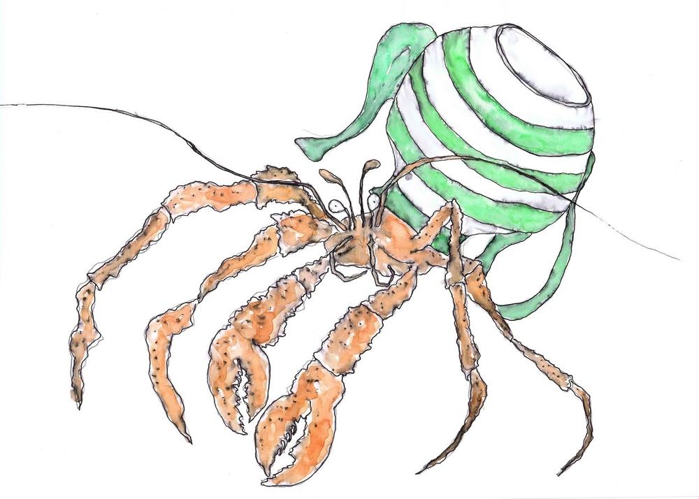 Hermit Crab Low-res.jpg