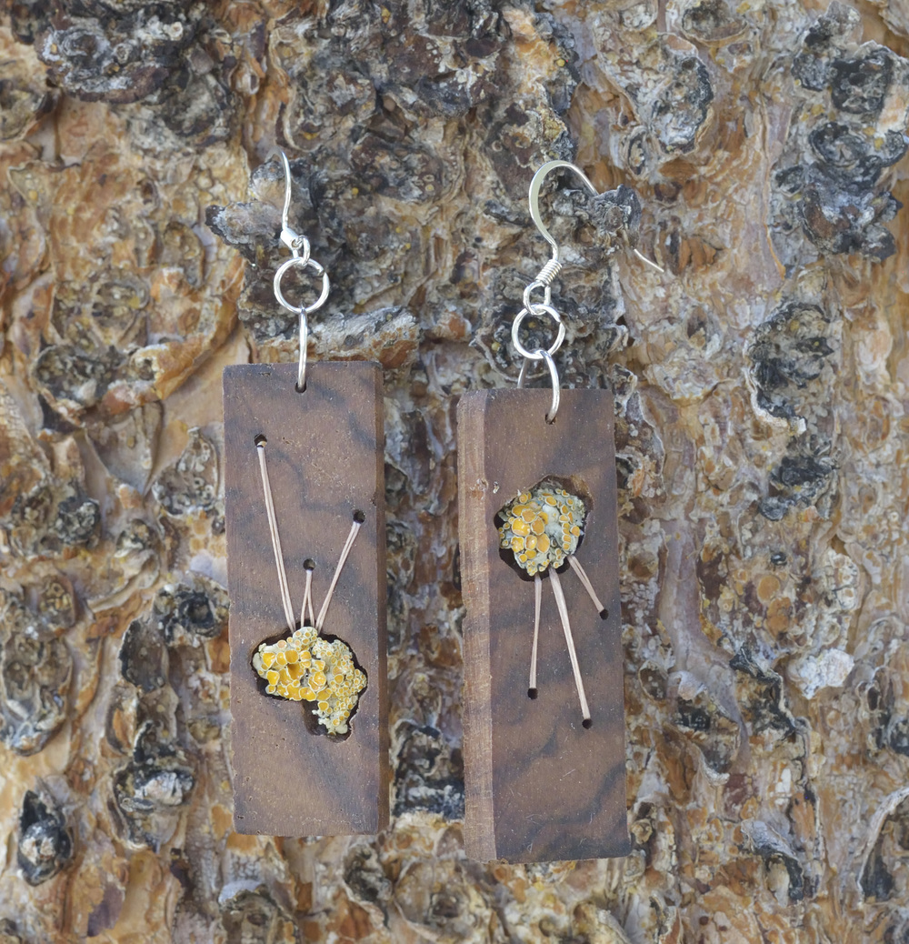 Lichen Shine Earrings (Walnut)
