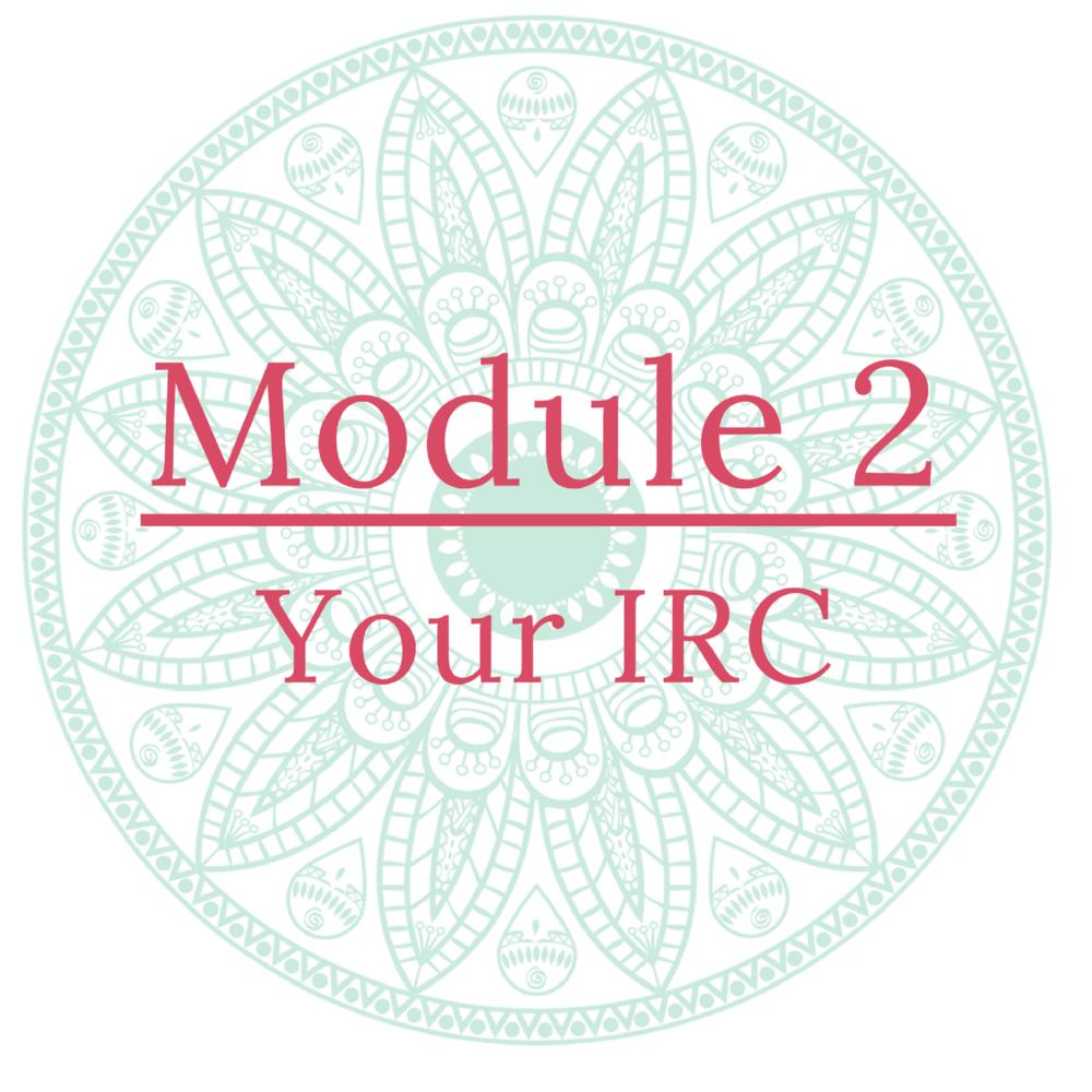 Icon Module 2