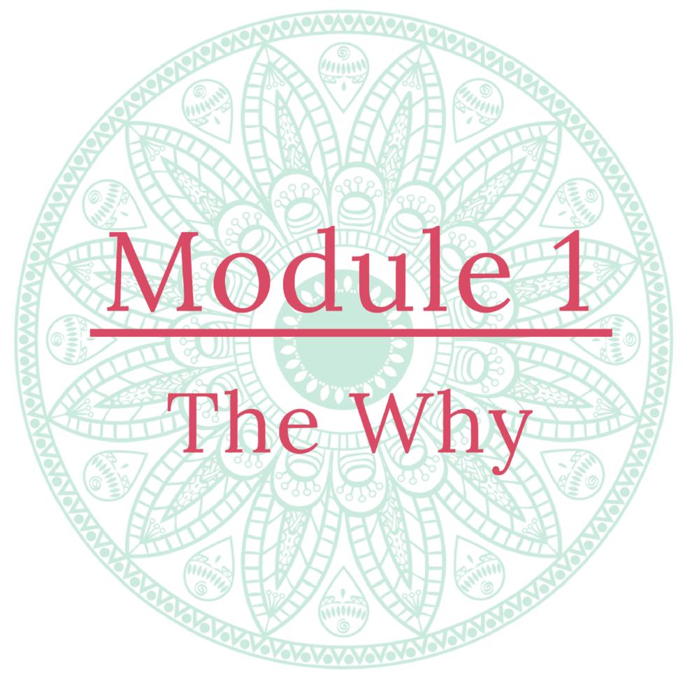 Module 1 Icon