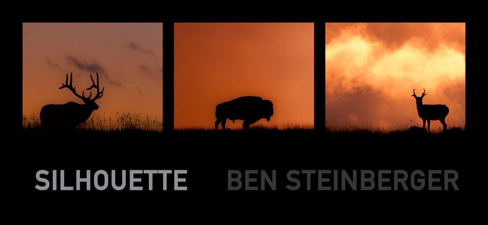silhouettesgrey.jpg