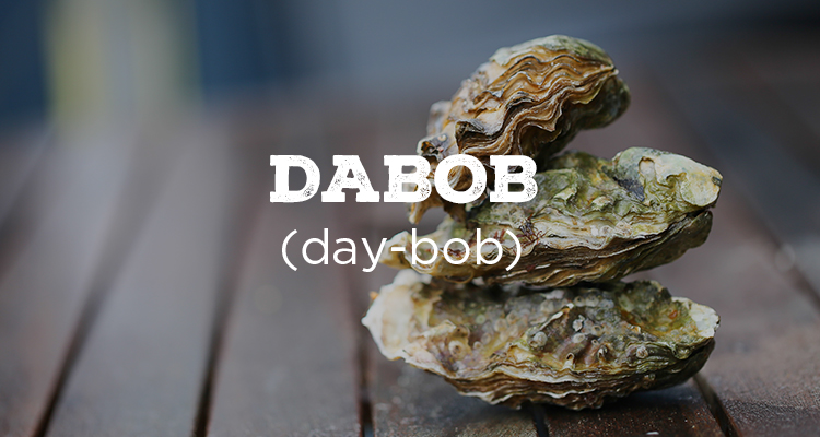 explore-hood-canal-dabob-oysters