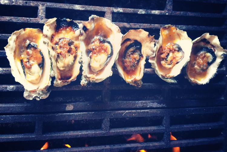 explore-hood-canal-hama-hama-oysters.jpg